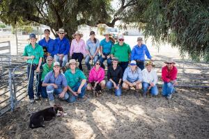2019 Hay Inc dog training group