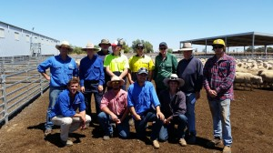 Hay Inc Trainees and trainers